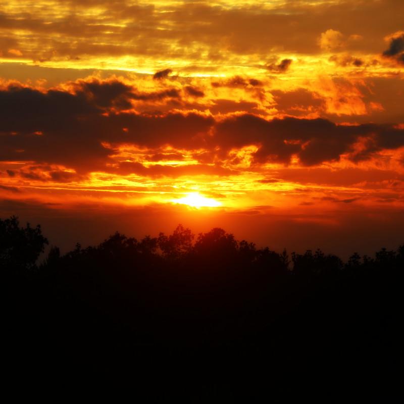 sunset 2016 ww